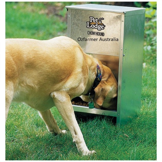 Chow Hound Dog Feeder Holds 11kg