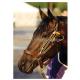Stableizer Equine Restraint Large (Red)